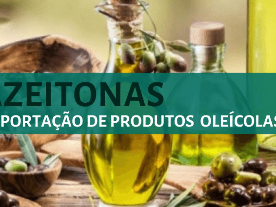 Importação de azeites e azeitonas: como funciona?